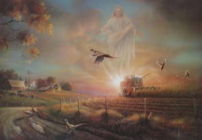 The Blessing the Harvest by John C Green